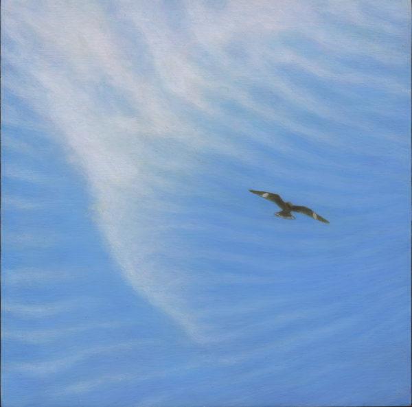 Diana Simard Nighthawk